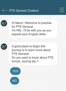 In app chatbot